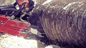 Man sawing wood chainsaw stock video