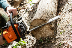 Man sawing wood log with a chainsaw. Stock Image