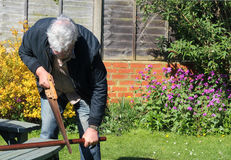 Man sawing wood. A senior man sawing wood Stock Images