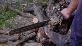 Man sawingträ med chainsawen, chiper, att falla för sågdamm lager videofilmer