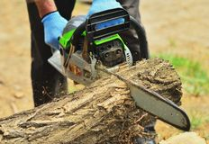A man saws a log with a big chainsaw. Chips are flying royalty free stock photography