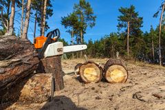A man saws a log with a chainsaw. The man saws the log with a black-orange-white chain saw, against the background of sand. a man saws a log with a chainsaw royalty free stock image