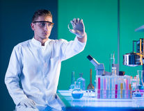 Man scientist analysing a petri dish Stock Image
