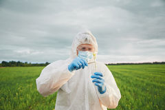 Free Man Scientist Put In Flask The Green Plant Stock Images - 41708004