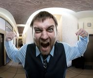 Man screaming at office Royalty Free Stock Images