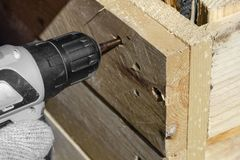 Experienced worker in a carpentry workshop creates a wooden product with raw boards and connects them with screws royalty free stock photography