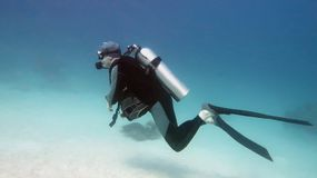 Man scuba diver in the blue water royalty free stock photo