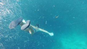 Man scuba diver in tropical sea stock video footage
