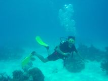 Man scuba diving Royalty Free Stock Image