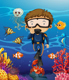Man scuba diving under the ocean. Illustration Stock Photography
