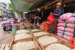 Man seeling garlic in Burmese market Stock Images