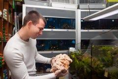 Man selecting seashells for aquarium in petshop. Young man selecting seashells for aquarium in petshop royalty free stock photos