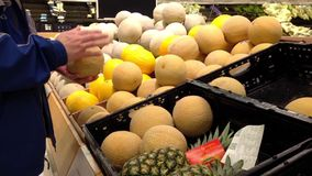 Man selecting sweet melon stock footage