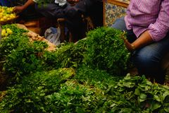 Man sell fresh indian herbs, pepper mint, basil, parsley, dill, spinach, salad. An indian man is selling fresh indian herbs on market from his stall: pepper mint royalty free stock images