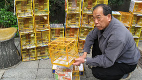 Man Selling Birds at Hong Kong Bird Market Stock Image