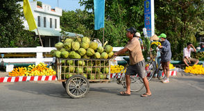 A man selling coconut fruits on street in Sadek, Vietnam Stock Images