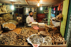Man selling dry fish on market, India Royalty Free Stock Images