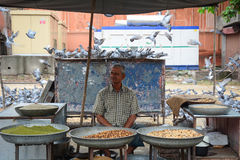 A man selling foods for birds at the park in Jaipur, India Royalty Free Stock Images