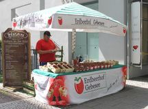 Man is selling fresh strawberries in Weimar, Thuringia, Germany Stock Photo