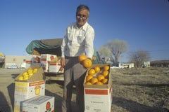 Man selling fruit Royalty Free Stock Photo