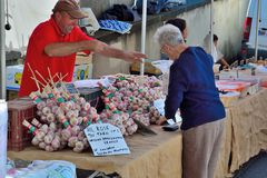 Man selling Rose Garlic at a local market. VIC-SUR-CERE, FRANCE, 15 JULY 2014:Unidentified smiling man selling Rose Garlic at a local market Royalty Free Stock Image