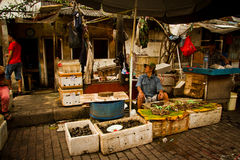 Man selling sea food in Jakarta, Indonesia Royalty Free Stock Images