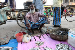 Man sells fish at fish market in Kumrokhali, West Bengal, India Royalty Free Stock Photography