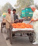 Man sells oranges on the market in Delhi, India Royalty Free Stock Photography