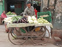Man sells vegetables in the market of Delhi, India Royalty Free Stock Images