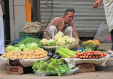 Man sells vegetables in the market of Delhi, India Stock Images