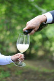 Man serves champagne to his woman. Man hand serves champagne to his woman glass in the green park, wedding event, outdoor picnic Royalty Free Stock Photo