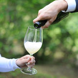Man serves champagne to his woman. Man hand serves champagne to his woman glass in the green park, wedding event, outdoor picnic Stock Images