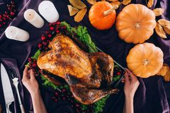 Man serving turkey for thanksgiving day Royalty Free Stock Photo