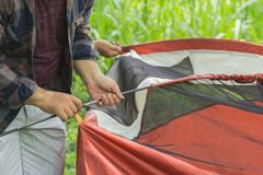 Man set up the tent. Cropped image of a man helping friends to set up the tent Stock Photos