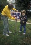 Man setting up Bush/Quayle campaign sign Stock Images