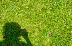 Man shadow with take a photo action on green grass.  Royalty Free Stock Photography