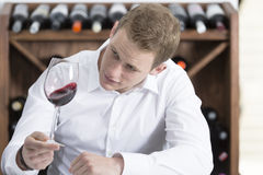 Man shaking a red wineglass. Young man on a wine tasting session on the olfactory phase is analyzing the red wine shaking the wineglass at a restaurant Stock Images