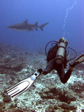 The man and the shark. Diver in danger: he's the catch and the big shark is the hunter Stock Photo