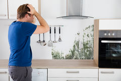 Man Shocked On Seeing Mold. Young Man Shocked On Seeing Mold On Wall In Kitchen stock image