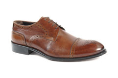 Man shoe Stock Photography