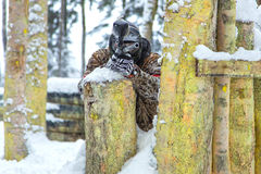 Man shooting from paintball gun behind log fortification. оn nature Stock Images