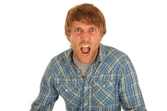 Man Shouting. Red haired man in plaid shirt shouting, isolated Stock Images