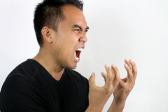 Man shouting with rage. Portrait of a man screaming in rage on a white background Royalty Free Stock Photos
