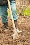 Man with shovel Stock Photo