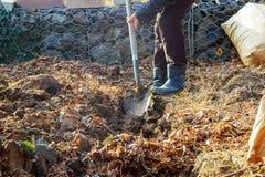 Man shoveling ground for landscape repair Stock Photo