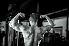 Man showing back in gym Stock Image