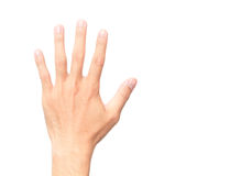Man showing back hand and five finger count on white background. Man showing back hand and five finger count stock image