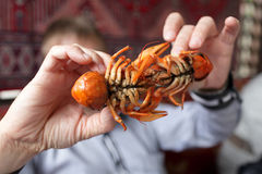 Man showing crawfish Royalty Free Stock Photos