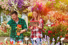 Man showing flower to woman Stock Photo