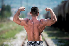 Man Showing His Back Double Biceps Royalty Free Stock Image